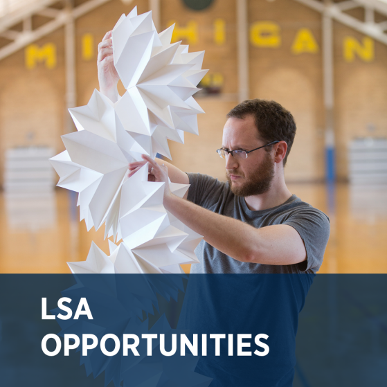 LSA Opportunities