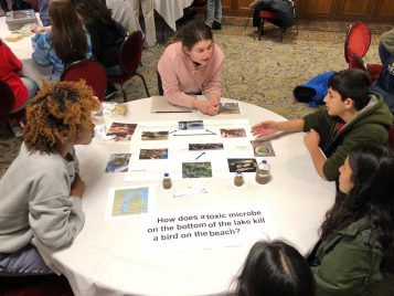 Students engage around the topic of avian botulism in Lake Michigan.