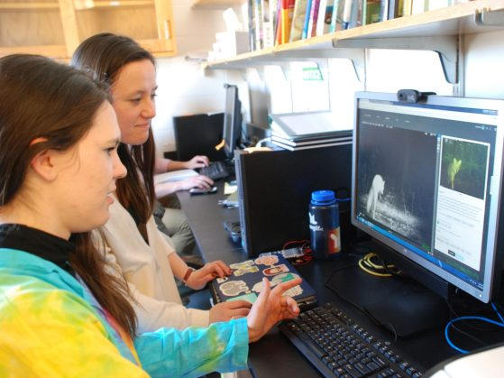 Victoria Zakrzewski (front) and Natalie Greenhalgh identify wildlife camera trap images on Michigan ZoomIn.