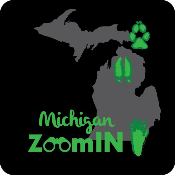 Michigan ZoomIn logo created by Victoria Zakrzewski