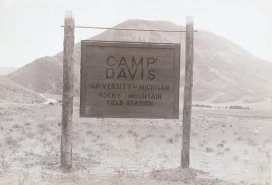 Black-and-white photograph of a Sign that says Camp Davis University of Michigan Rocky Mount Field Station