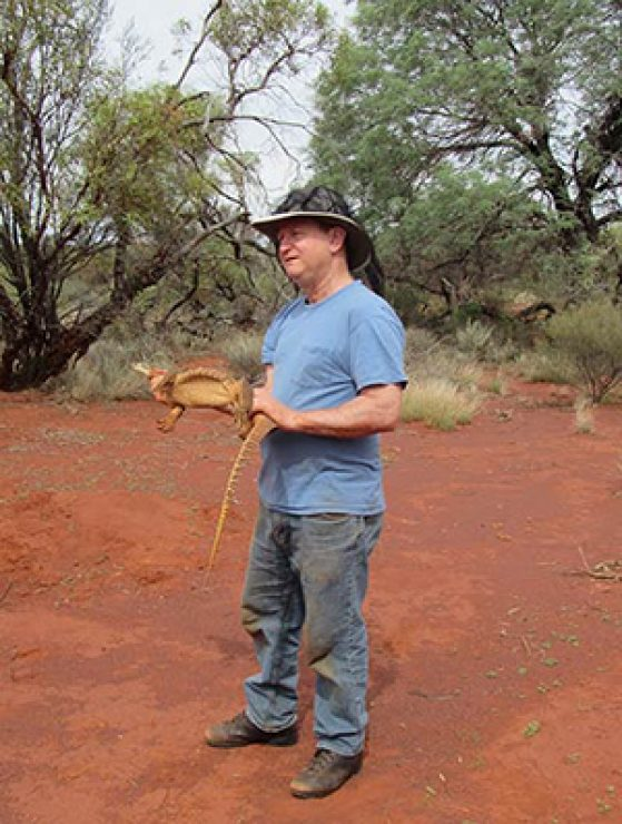 Greg Schneider, collection manager, Reptiles and Amphibians Division, U-M Museum of Zoology, in Lorna Glen, Australia during a brief encounter with a monitor lizard.