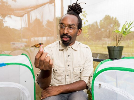 U-M biologist D. André Green holds a monarch butterfly in an outdoor insectary at the university's Matthaei Botanical Gardens.